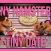 Animals Gone Viral: Tiny Hamster's Tiny Date