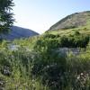 Blue Mountain's Best: Lehigh Gap Nature Center