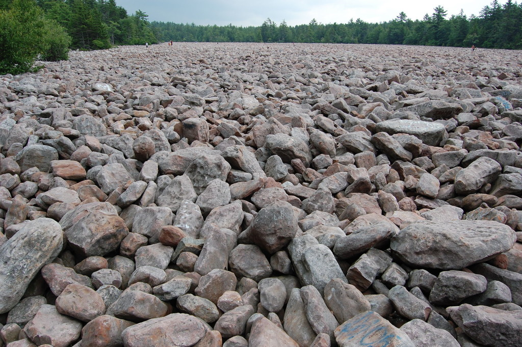 Boulder Field in Hickory Run