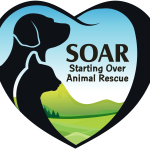 SOAR Logo